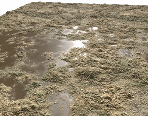 Dirty Terrain Seamless PBR Texture