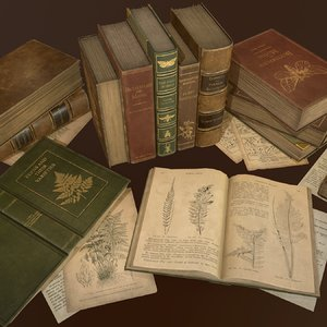 3D old books set ready model