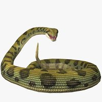 3D anaconda animal model