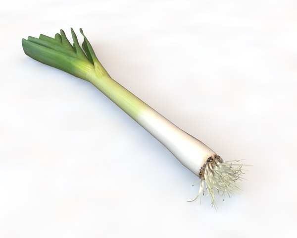3D onion potato