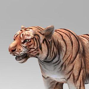 3D tiger mammal animal