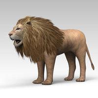 3D lion animal model