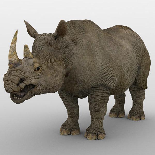 3D rhinoceros animal mammal model
