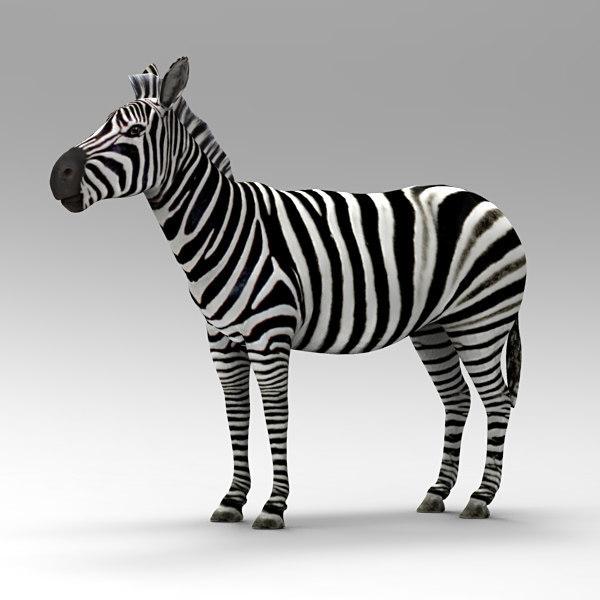 3D zebra animals beast