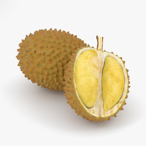 3D durian food fruit