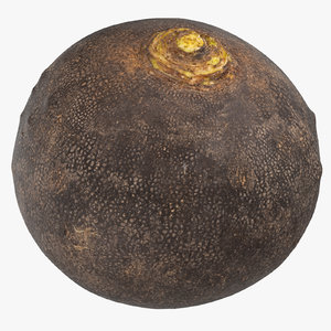 3D turnip black 04 model