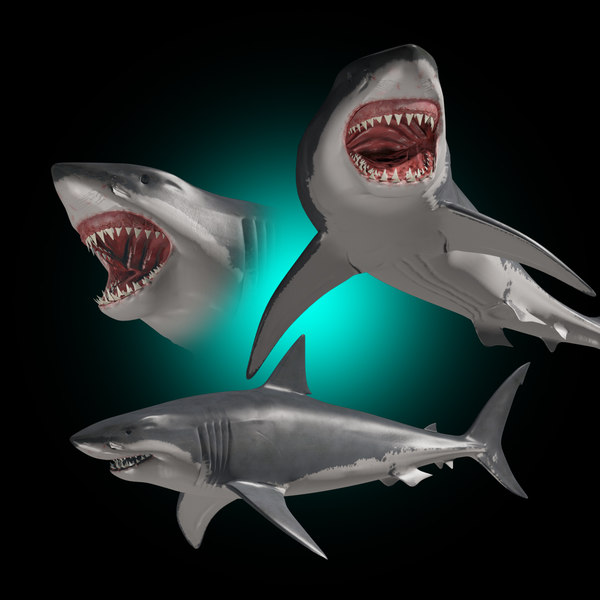 3D realistic great white shark