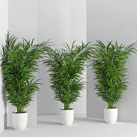 3D houseplant 32