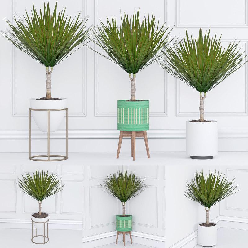 houseplant 33 3D model