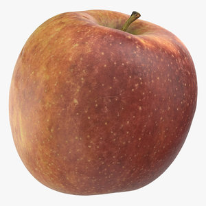 ambrosia apple 05 3D