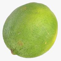 Kaffir Lime 03