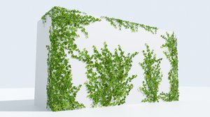 3D ivy natural vines