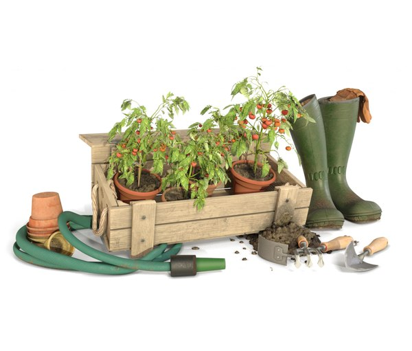 3D gardener tomato toolkit