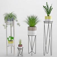 3D houseplant 35 model