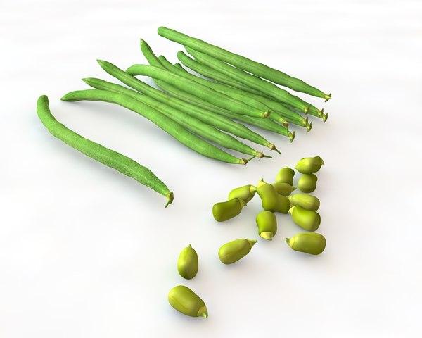 corn onion 3D model