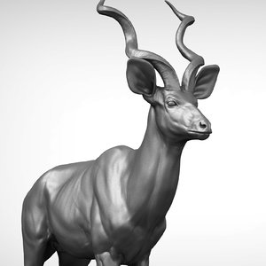 greater kudu 3D model