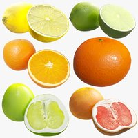 citrus fruit x6 package model