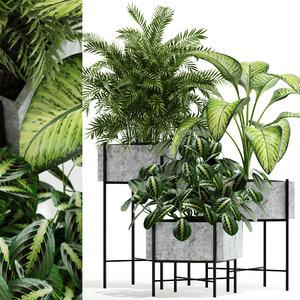 3D plants 143 opalo