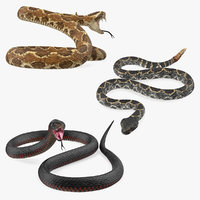 Snakes 3D Models Collection