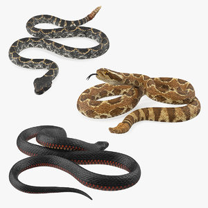 rigged snakes 3D model