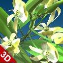 3D flower black orchid