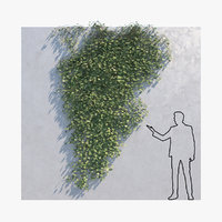 3D ivy - wall