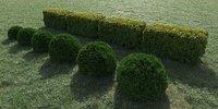 Hedge of bushes 3D