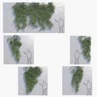 3D ivys wall