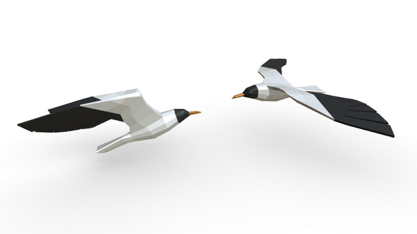 print seagull gull 3D model