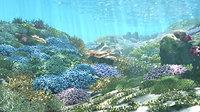 3D Cartoon Underwater Coral Reef Habitat Ocean Version 2