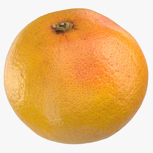 3D model grapefruit 02