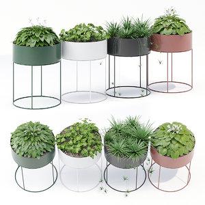 plant box 3D model