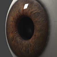 Photorealistic eyeball