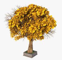 3D model tree autumn
