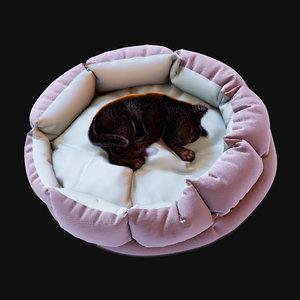 cozy cat bed kitten 3D model