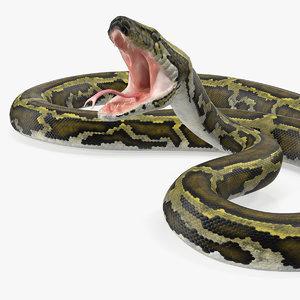 green python snake attack 3D model