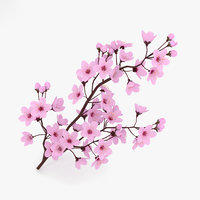 3D model cherry blossom