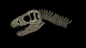 3D t-rex skull fossil
