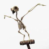owl skeleton handpainted 3D model