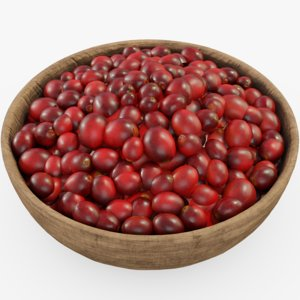 3D cranberry food fruit model