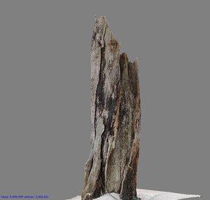 root photogrammetry scan 3D model