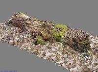 3D log photogrammetry scan