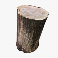 3D wet tree trunk seat
