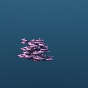 3D school sardine swimming fishes model
