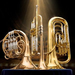 musical yamaha wind instruments 3D model