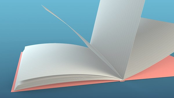 3D rigged book