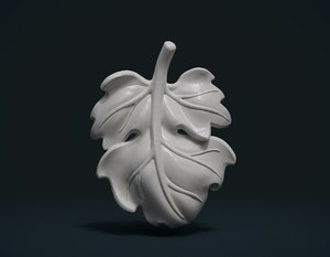 3D fig leaf ready printing
