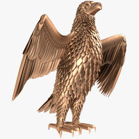 3D eagle bird animal