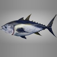 3D tuna fish l138 animate model