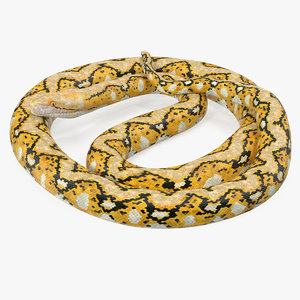 yellow python snake curled model